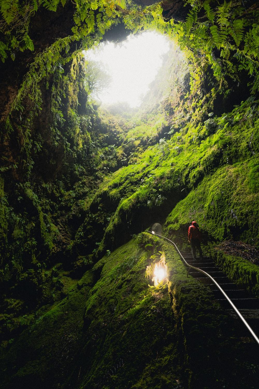 people walking on pathway between green mountains during daytime