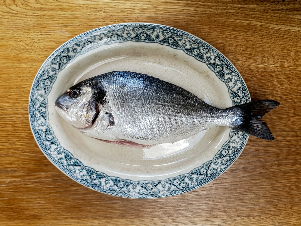 fish on white and blue floral ceramic plate