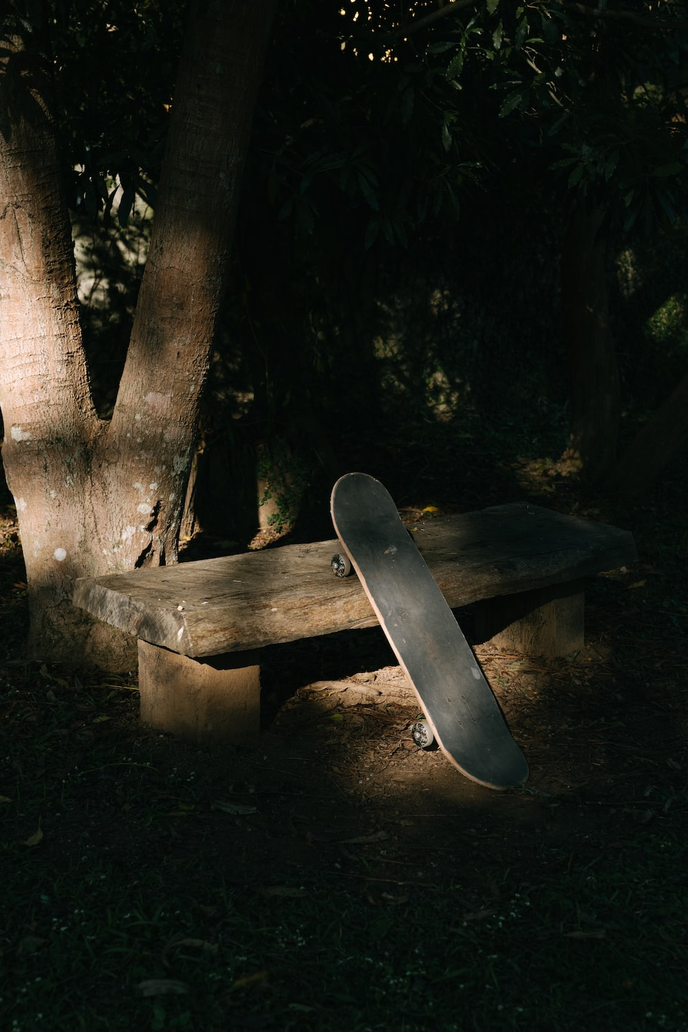 brown wooden picnic table surrounded by green trees