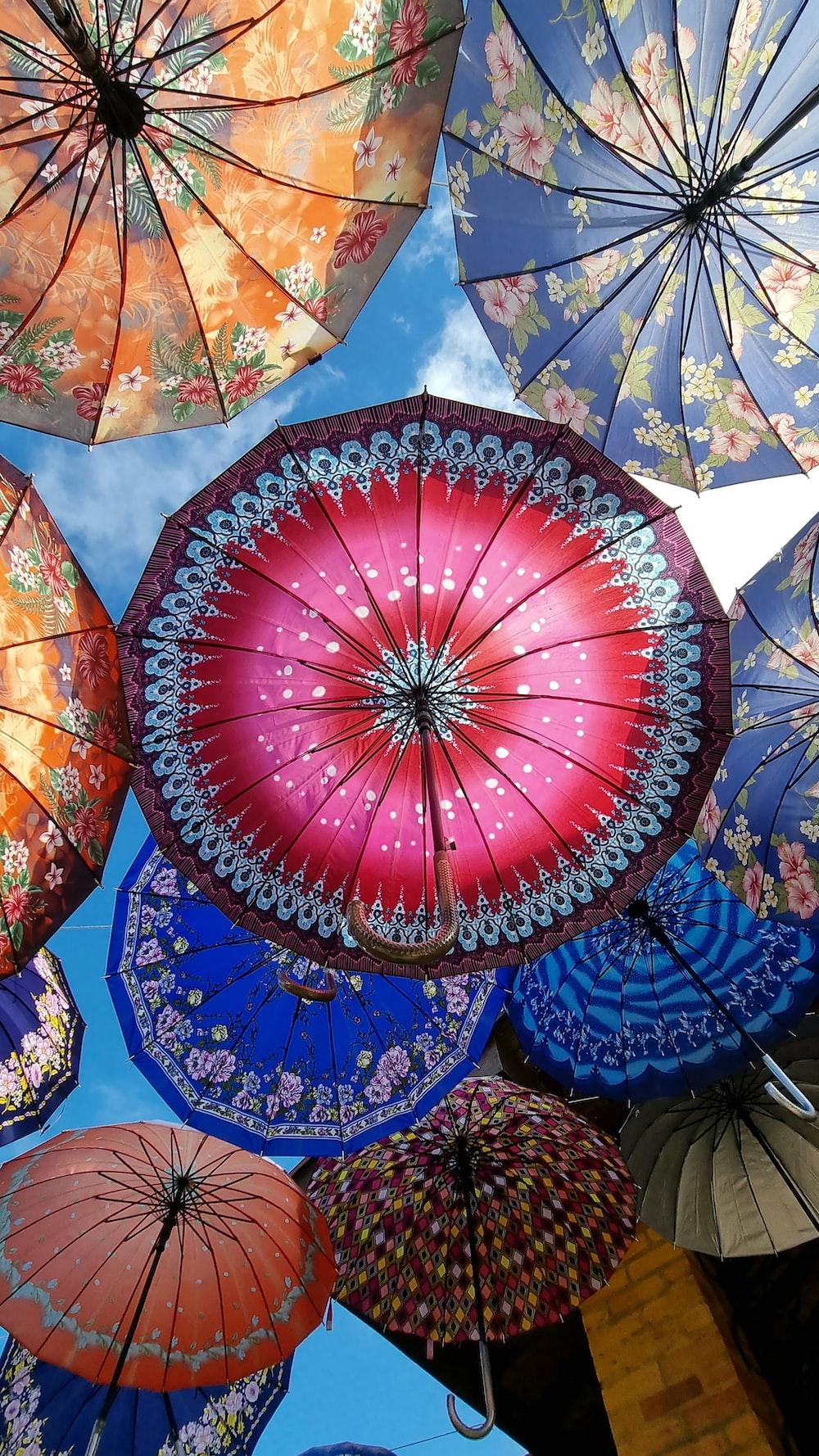red and blue umbrella umbrella under blue sky