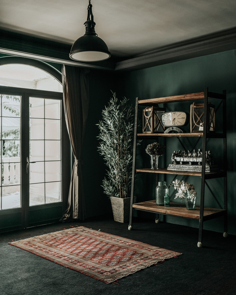 green wooden shelf with books and potted plants