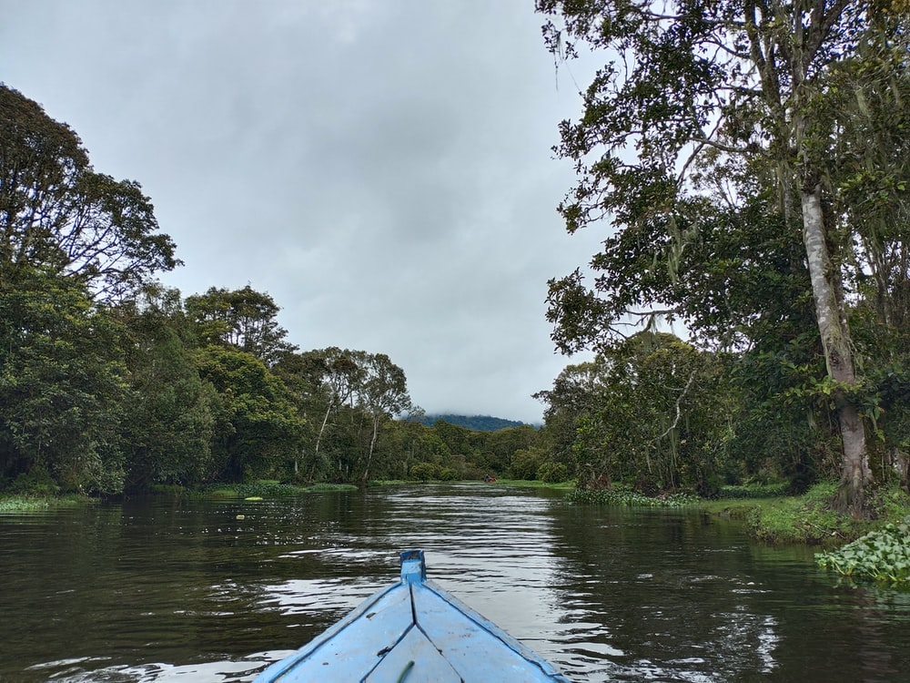 blue boat on river near green trees during daytime