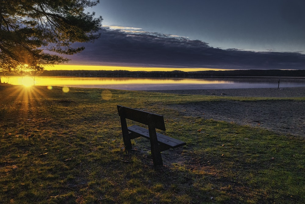 brown wooden bench on green grass field near body of water during daytime