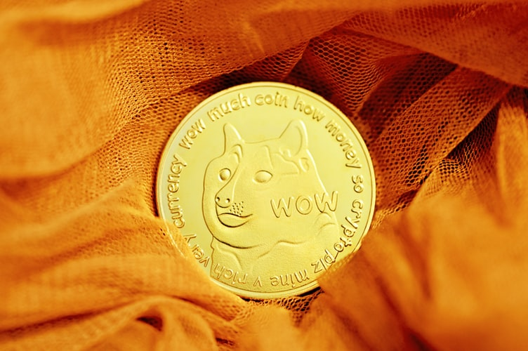 'I just became a dogecoin millionaire': Man invested his savings in the meme coin after inspired by Elon