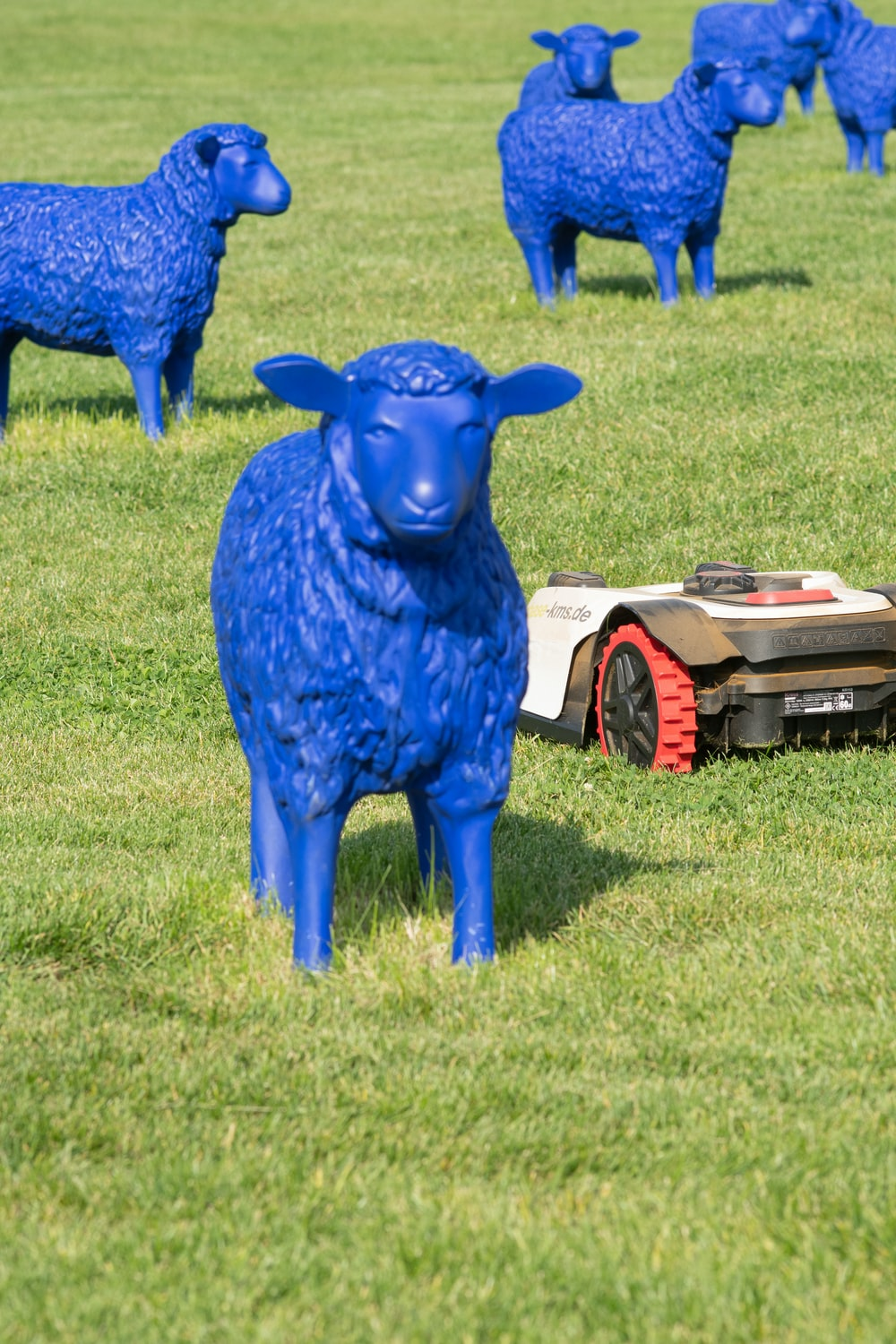 blue animal statue on green grass field during daytime