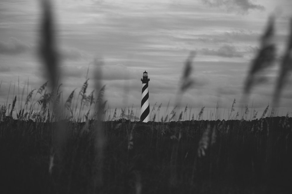 grayscale photo of person in stripe shirt standing on grass field