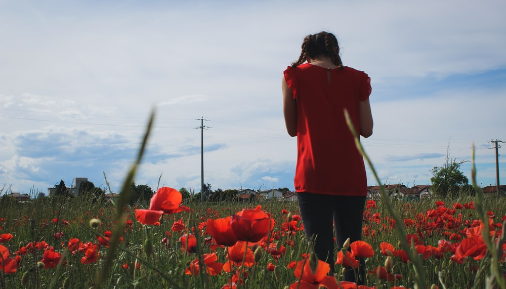 woman in red long sleeve shirt standing on red flower field during daytime