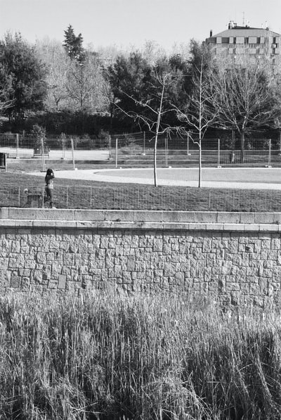 Grayscale photo of person walking on pathway. Woman walking dog, black and white