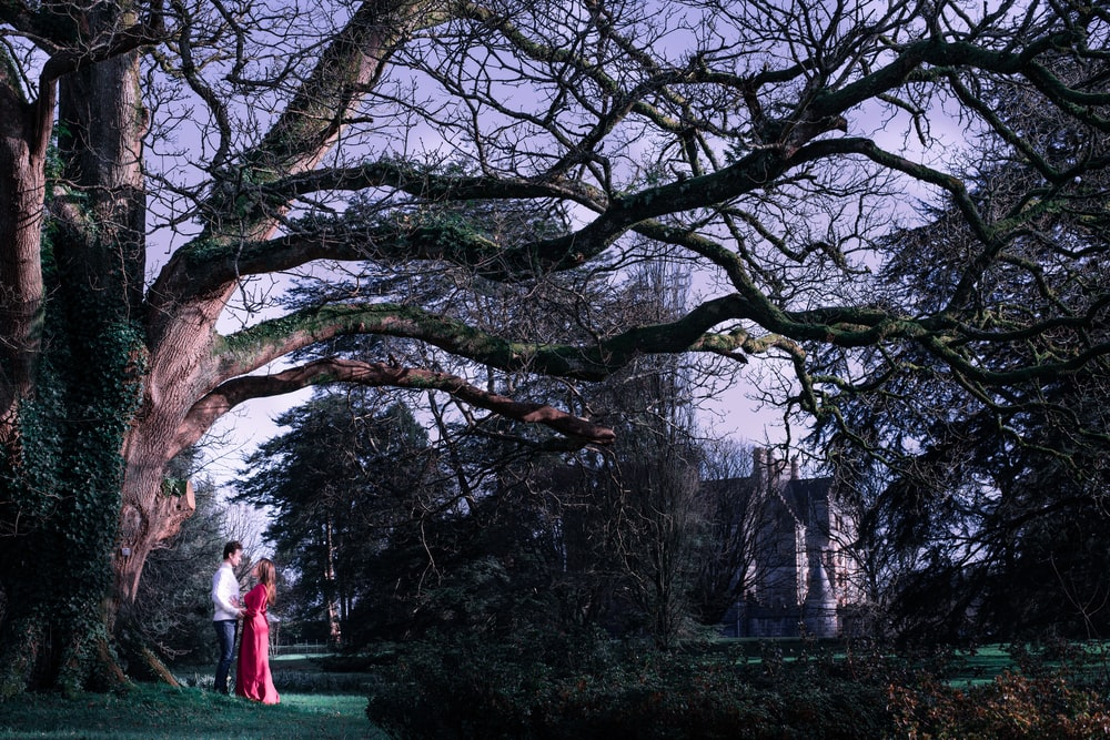 woman in red dress standing on green grass field surrounded by bare trees during daytime
