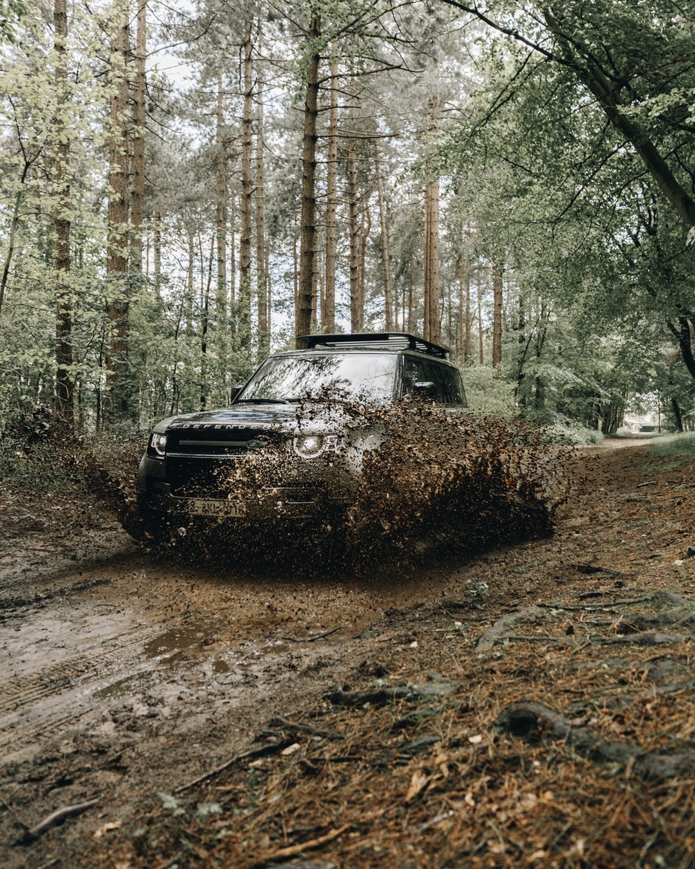 black car on dirt road in between trees during daytime