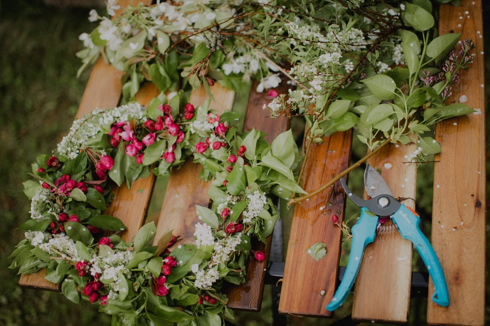 pink and white flowers on brown wooden fence