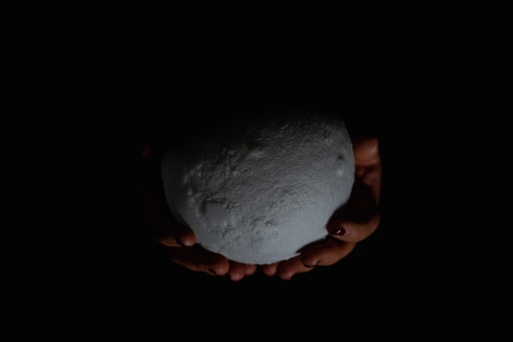 person holding white and brown stone