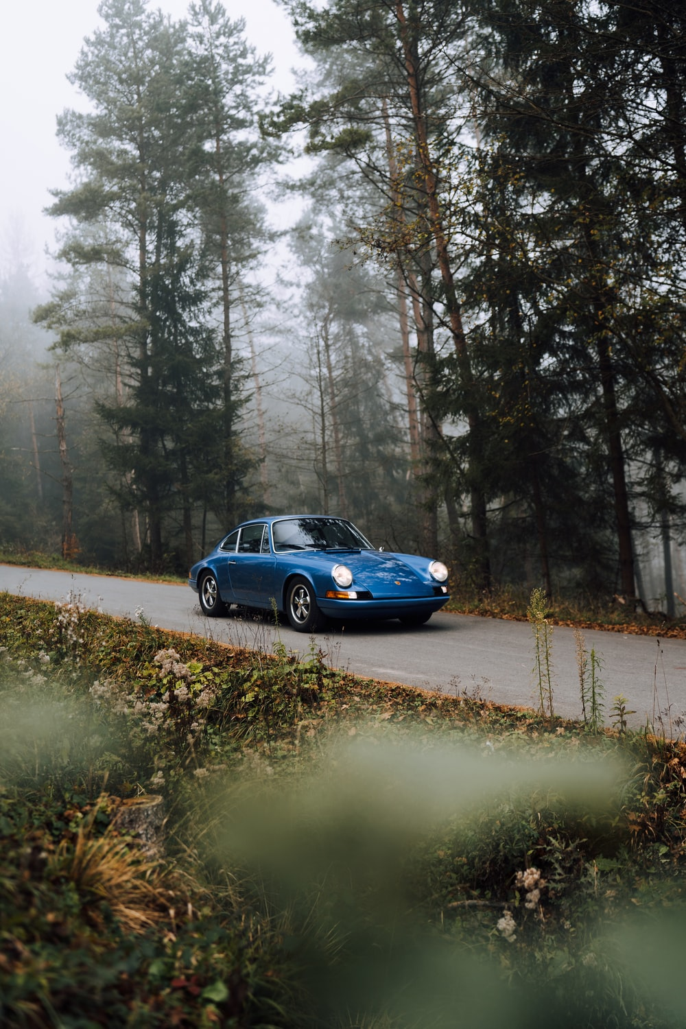 blue sedan on road surrounded by trees