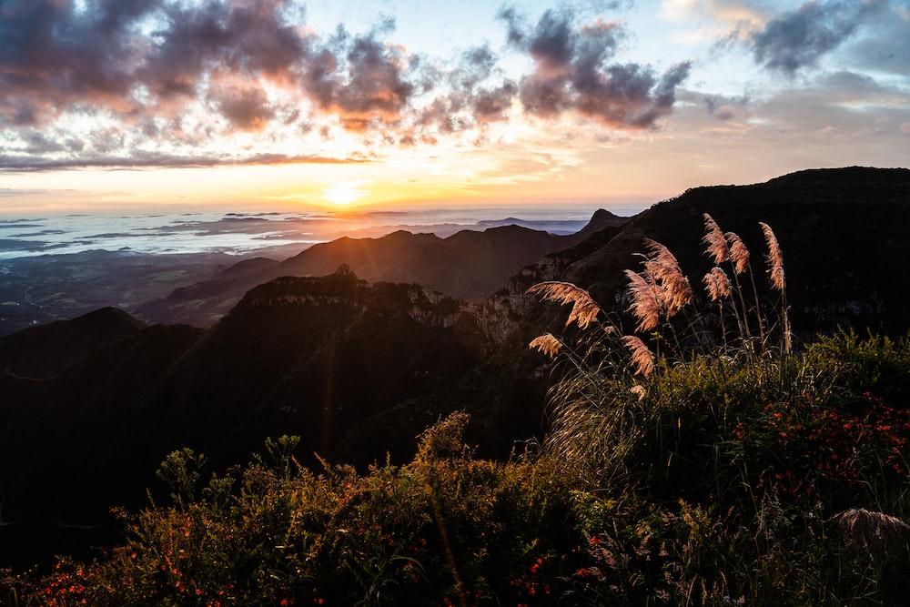 green grass field near mountain during sunset