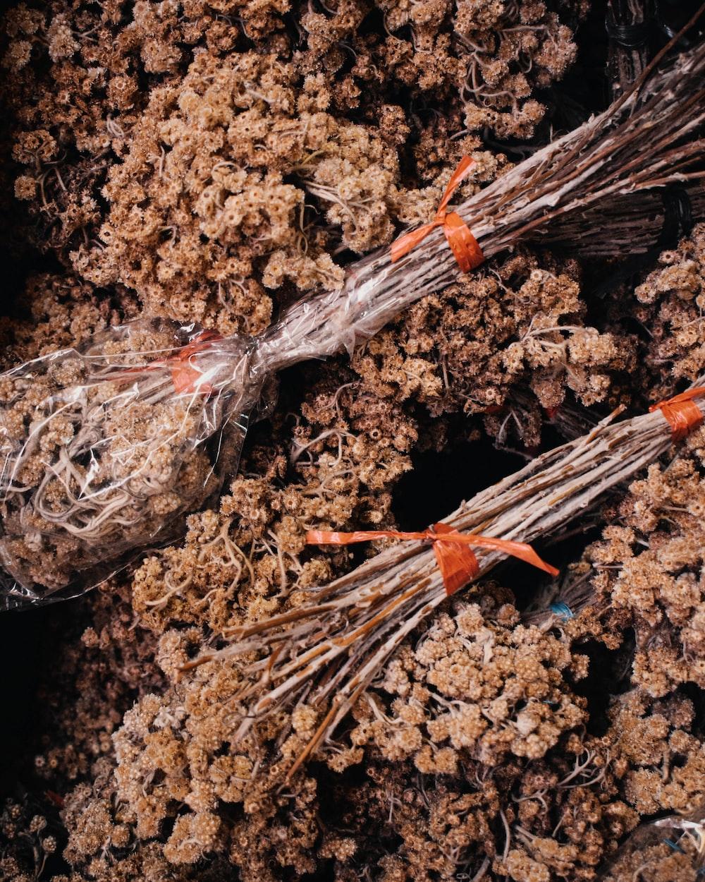 white and orange stick on brown soil