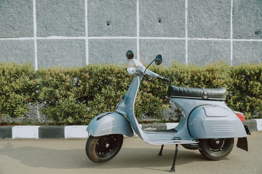 blue motor scooter parked beside green plant