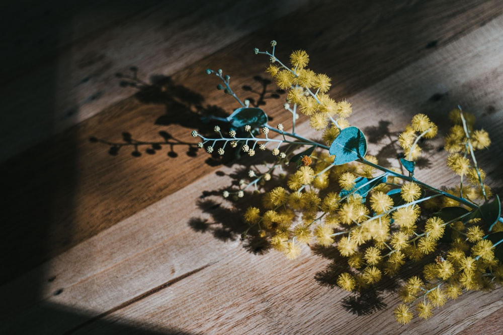 yellow and green flower on brown wooden table