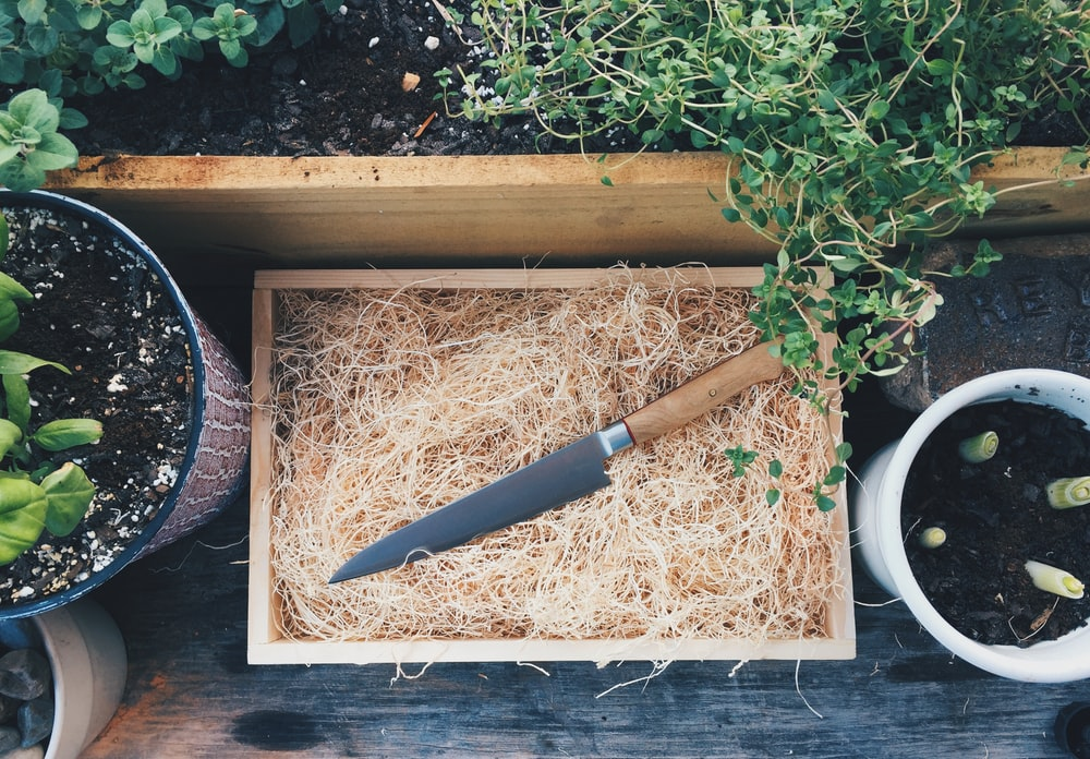 black and brown handle knife on brown wooden tray