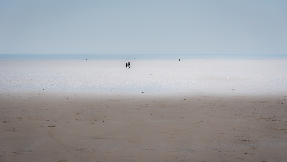 person walking on beach during daytime