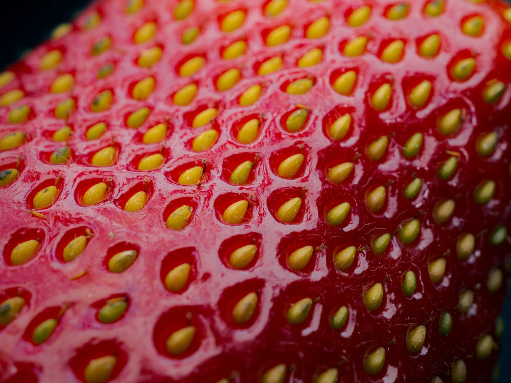 red strawberry fruit in close up photography