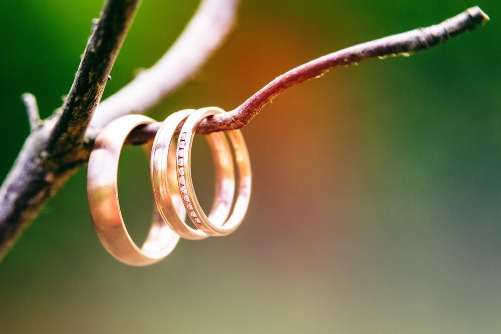 white steel wire on brown wooden stick