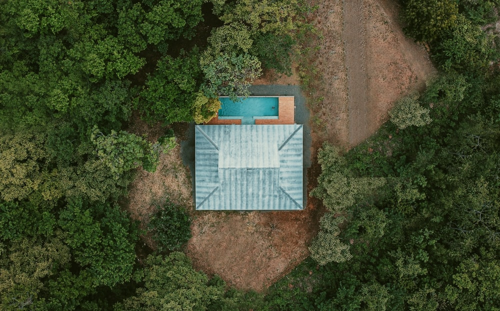 blue and white wooden house surrounded by green trees
