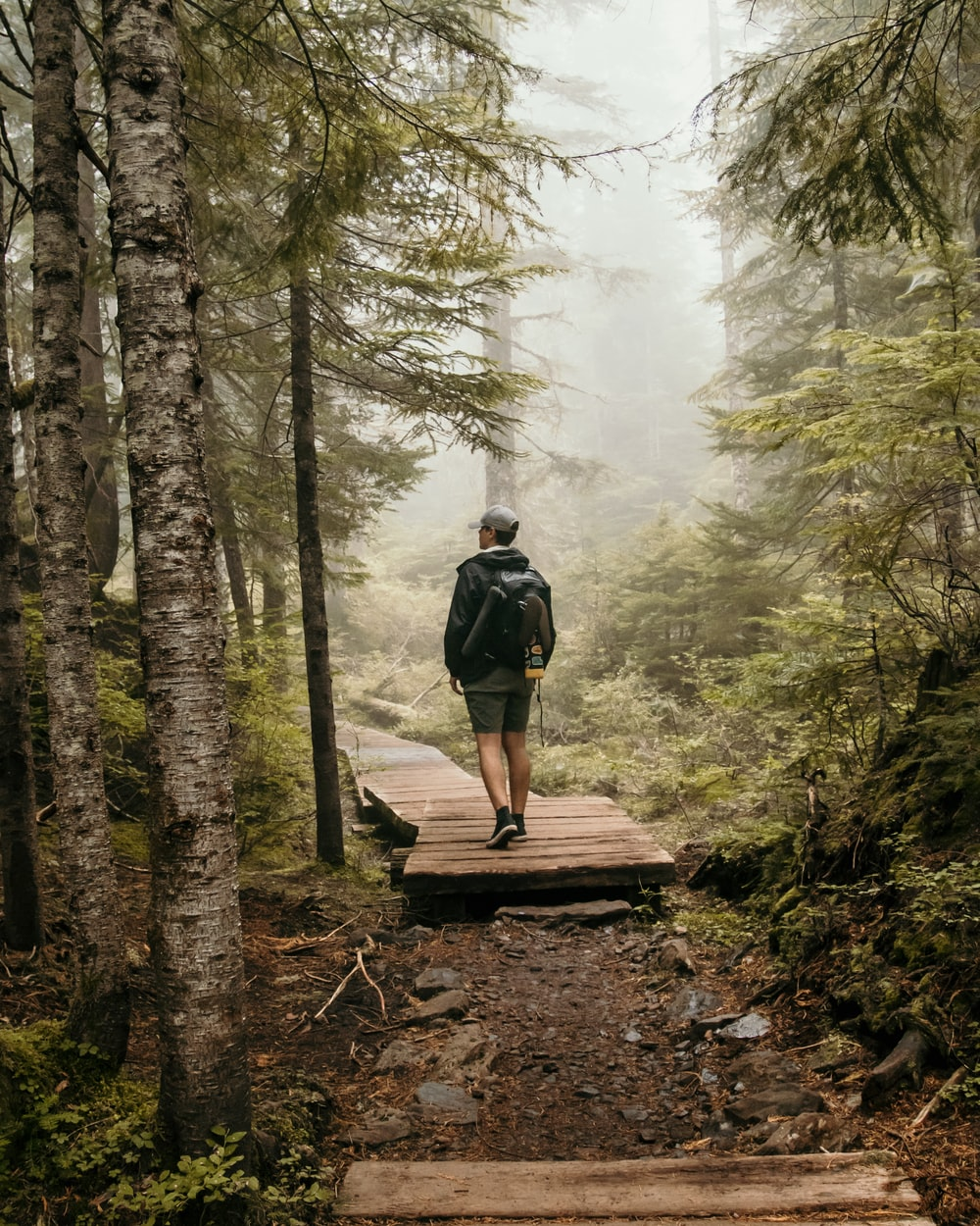 man in black backpack walking on brown wooden bridge in forest during daytime
