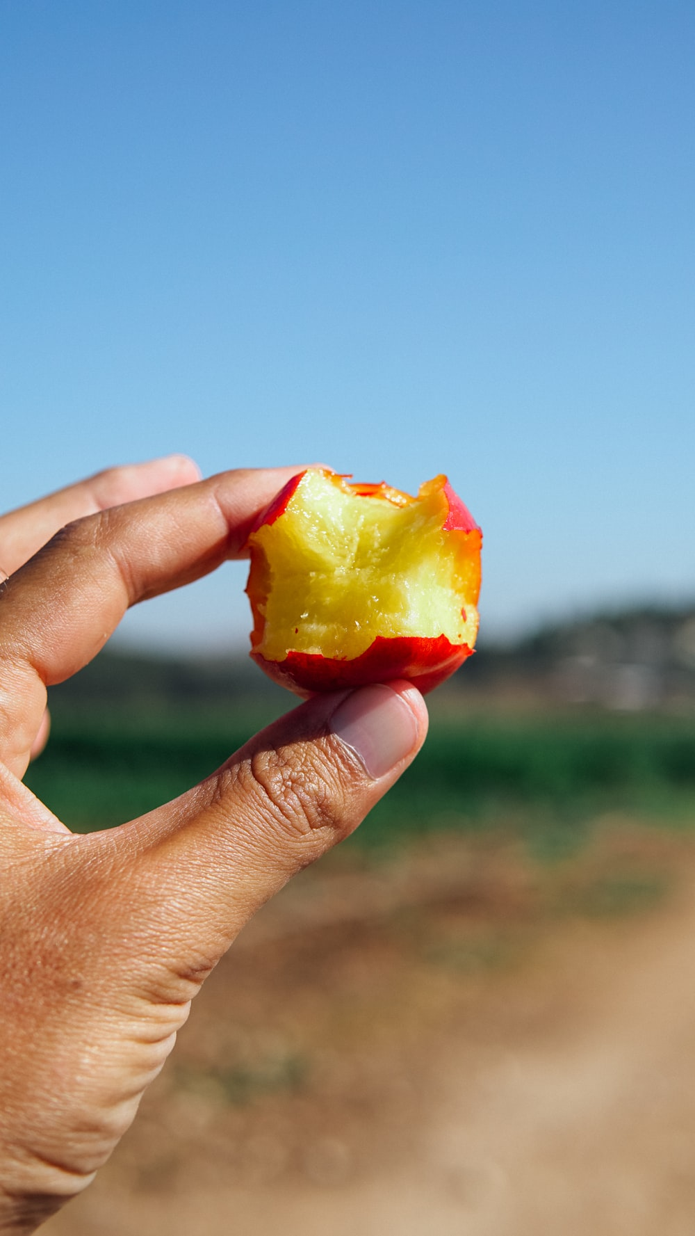 person holding yellow and red apple