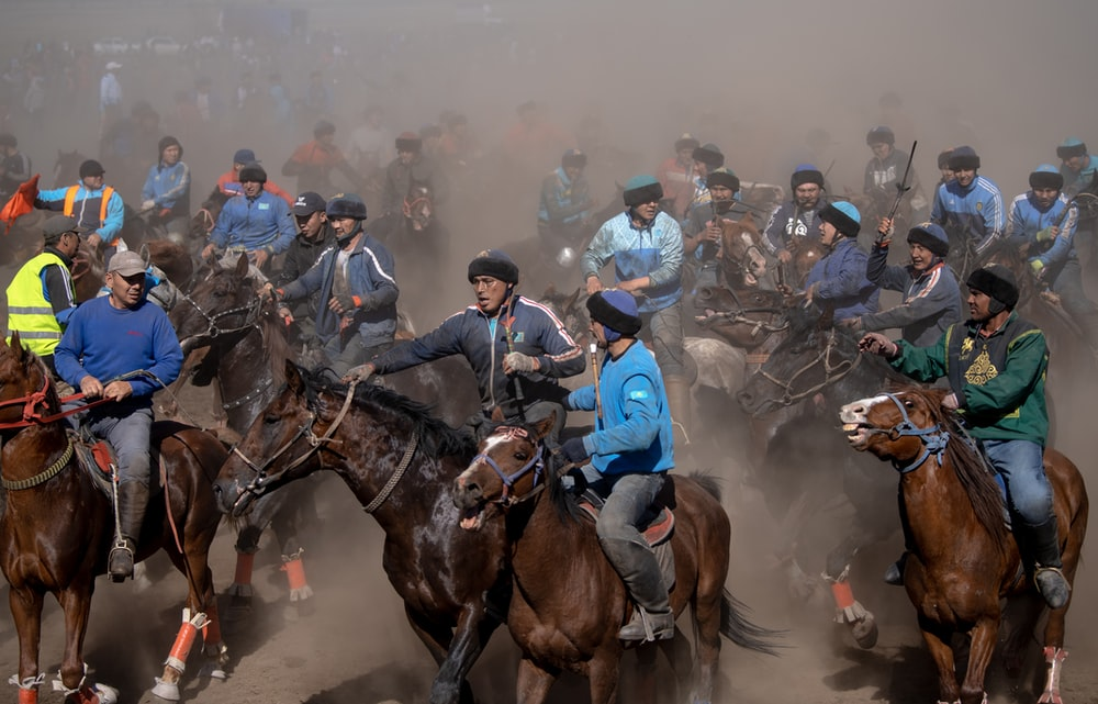 people riding horses on field during daytime