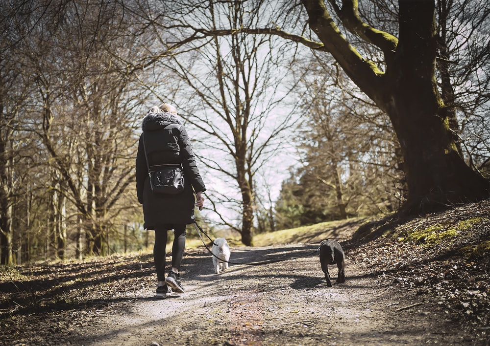 woman in black jacket walking on pathway between trees during daytime