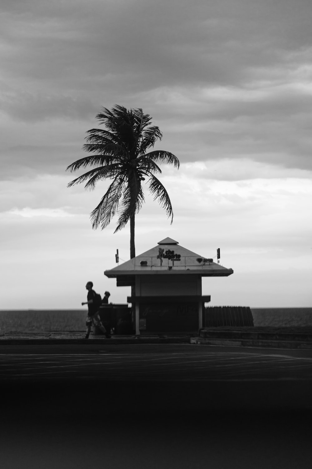 grayscale photo of 2 people sitting on bench near palm tree