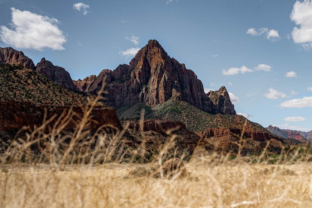 brown grass field near brown rocky mountain under blue sky during daytime