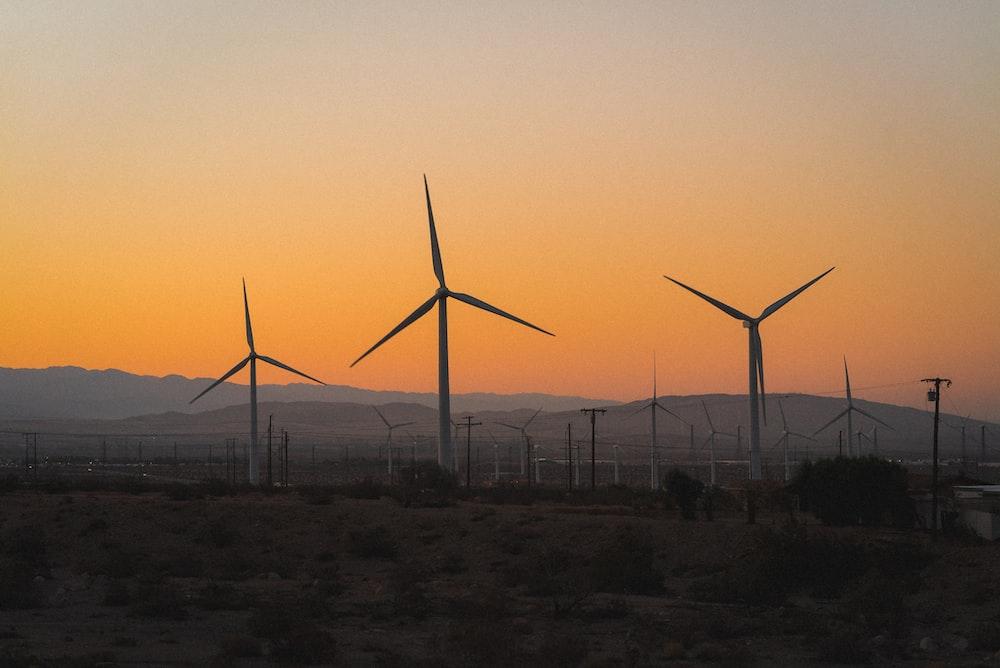 wind turbines on field during sunset