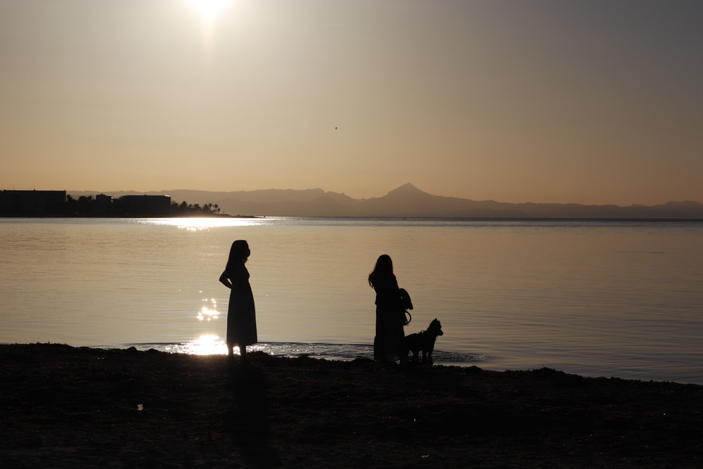 silhouette of 2 people sitting on beach during sunset