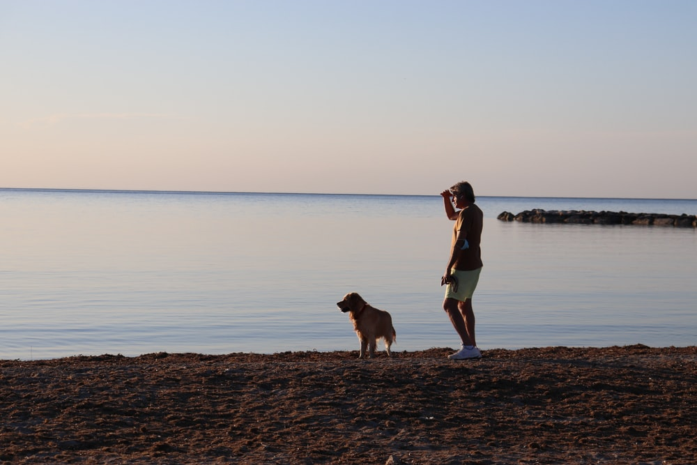man and woman standing beside dog on beach during daytime