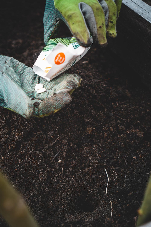 green and white sock on black soil