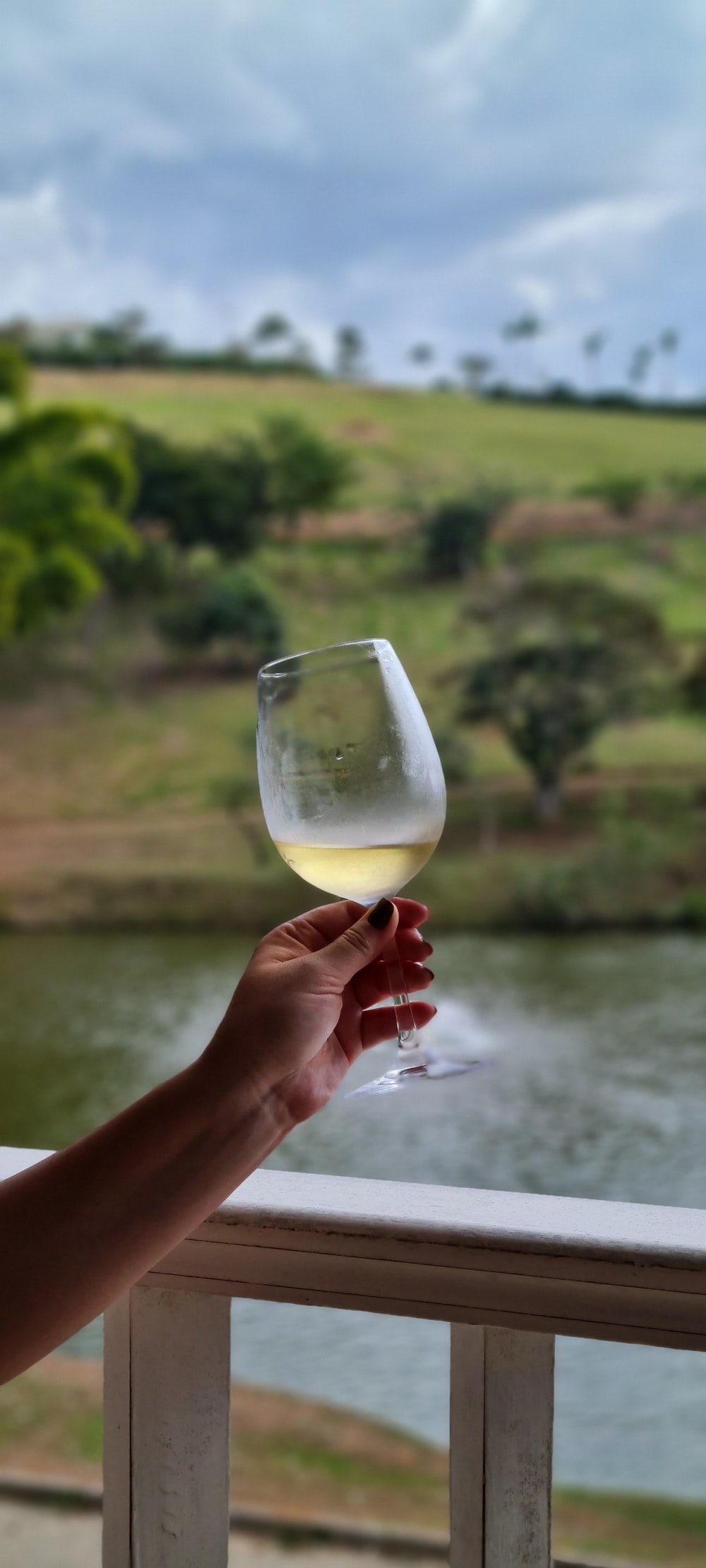 person holding clear wine glass with yellow liquid