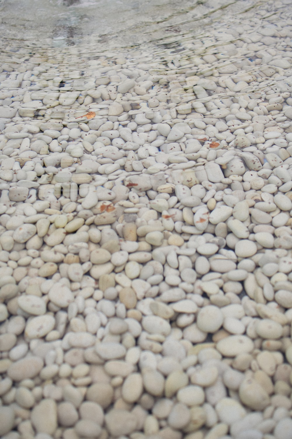 white and gray pebbles on the beach