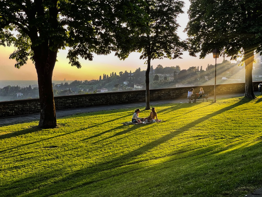 person sitting on green grass field near body of water during daytime