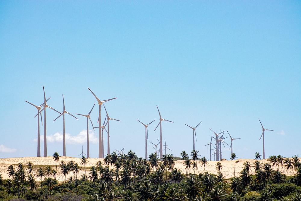 wind turbines on green grass field under blue sky during daytime