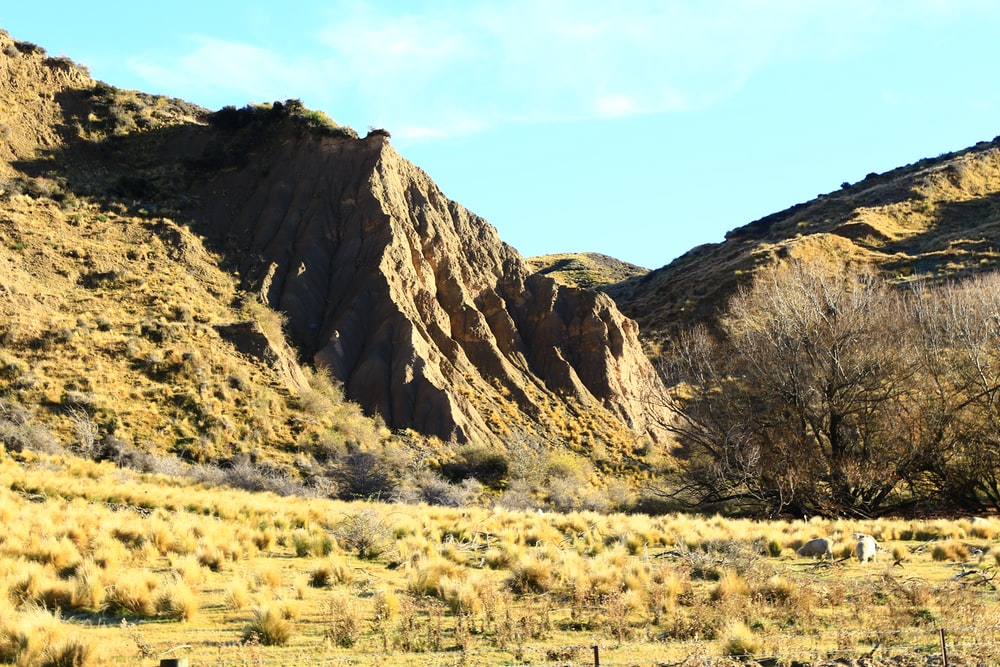 brown and green mountain under blue sky during daytime