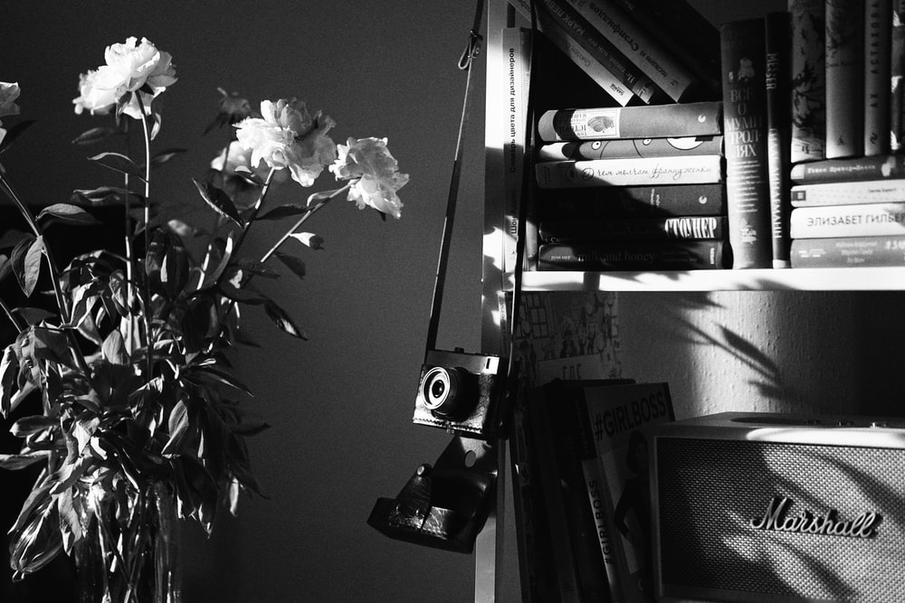 grayscale photo of flower in vase