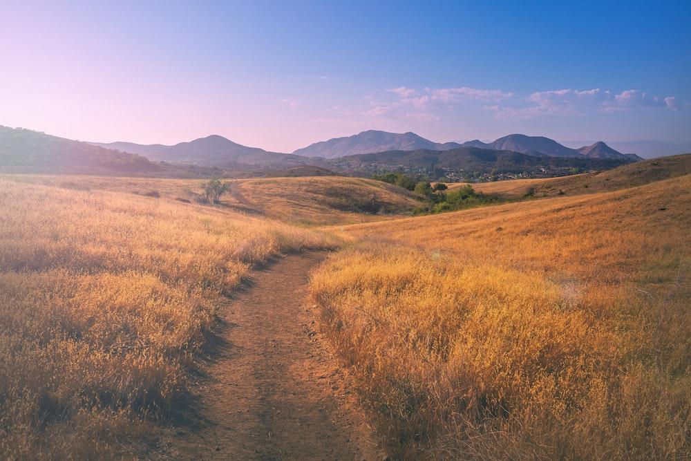 brown grass field near mountain under blue sky during daytime