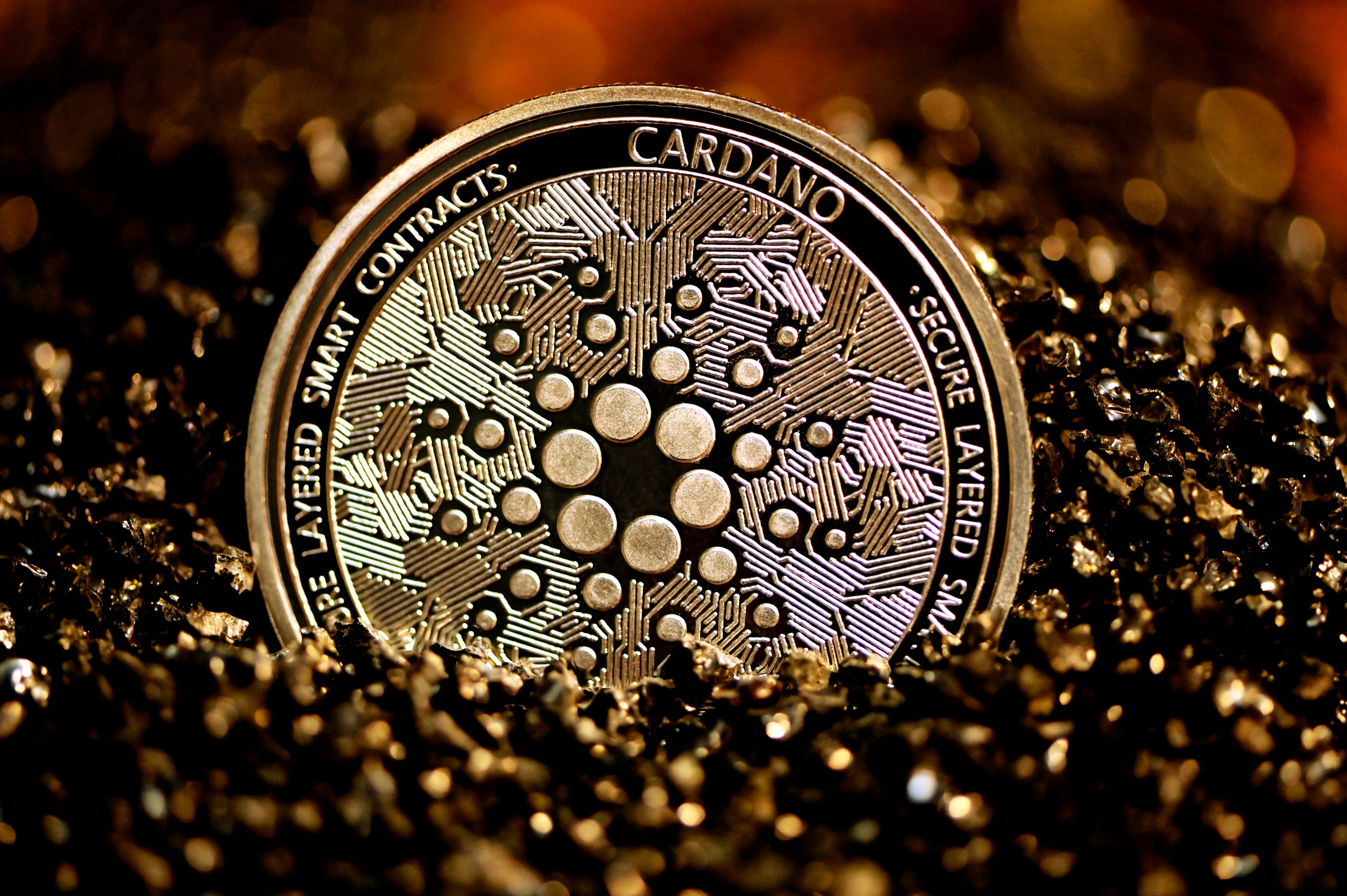 silver and black round coin