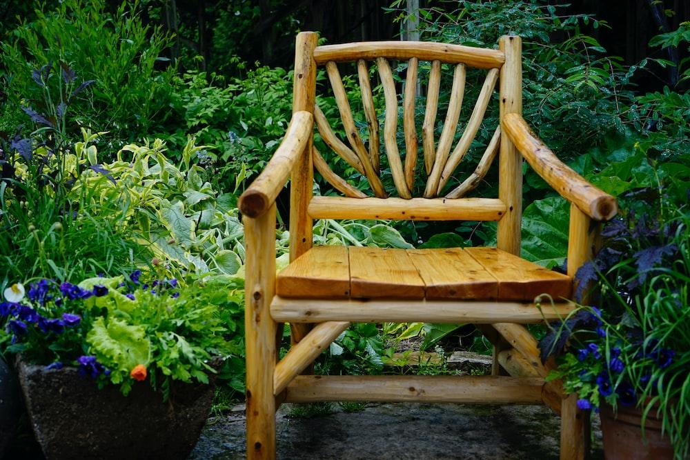 brown wooden armchair beside green plants