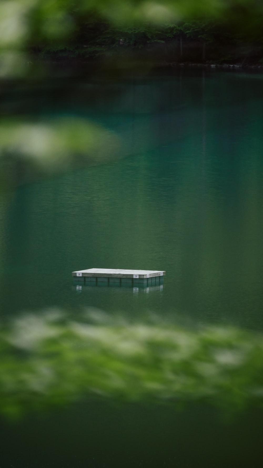 white wooden dock on lake during daytime