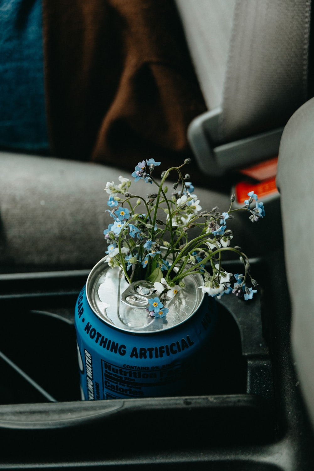 white flowers in blue can