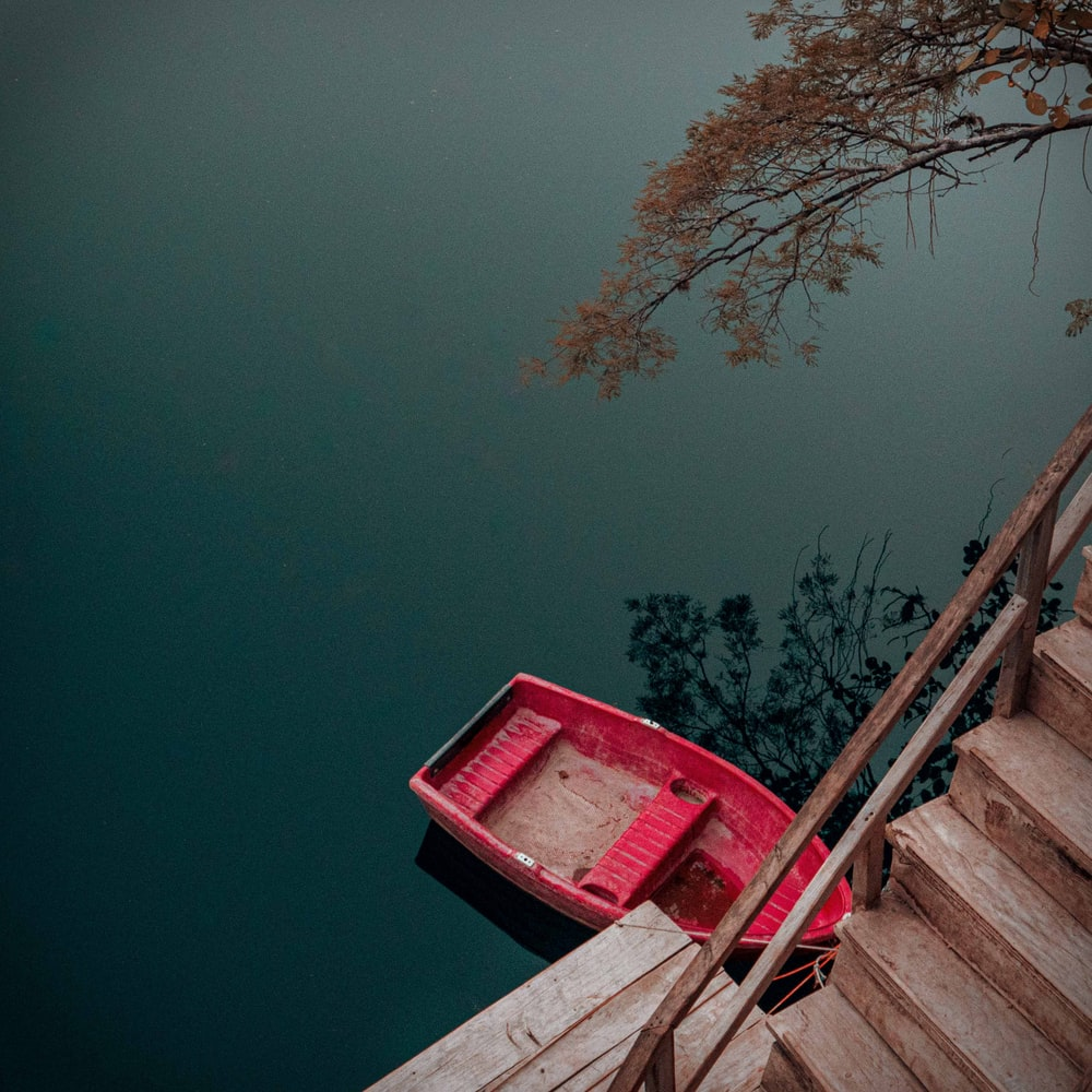 red wooden dock near brown bare tree during daytime