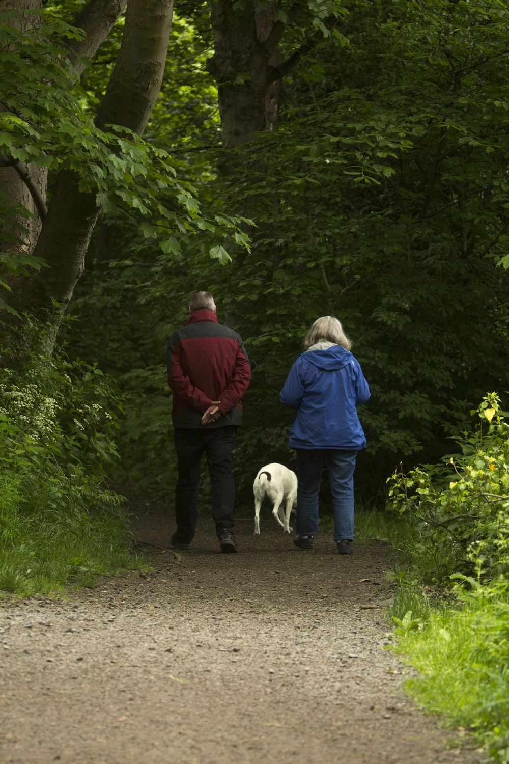 man and woman with white dog walking on dirt road during daytime