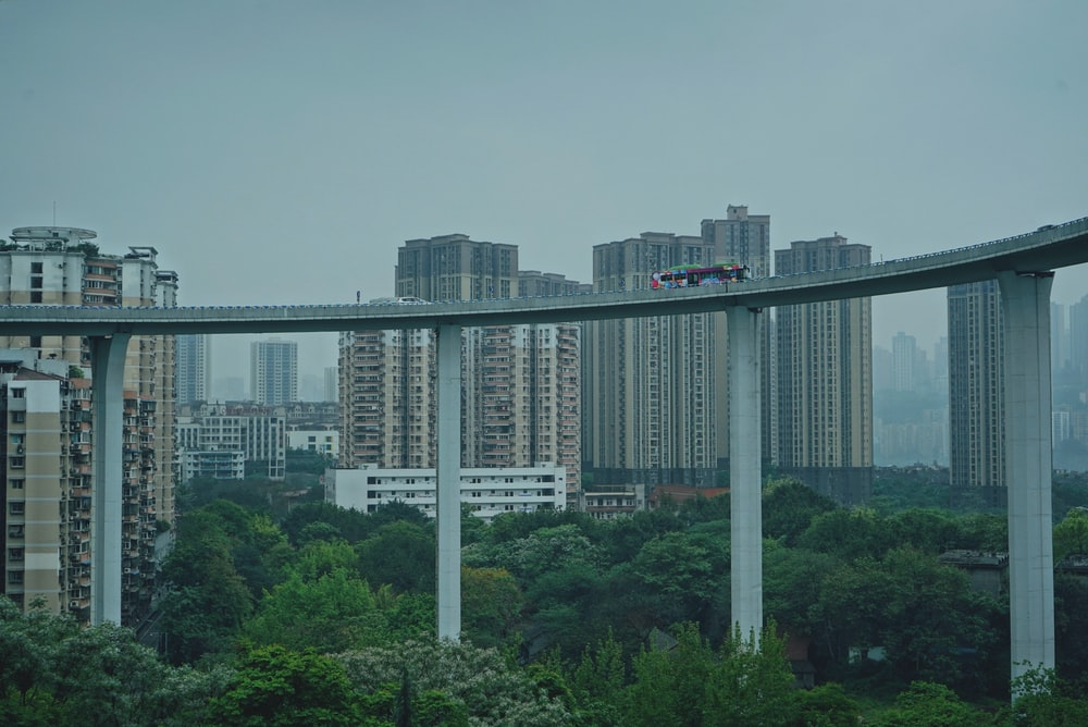 high rise buildings near green trees during daytime